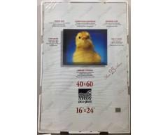 Cornice a giorno PICO-GLASS 40x60 - 16'' x 24''